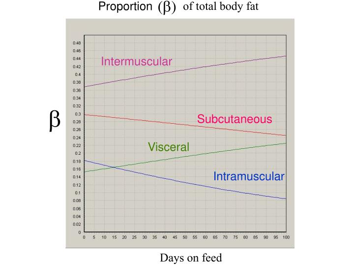 of total body fat