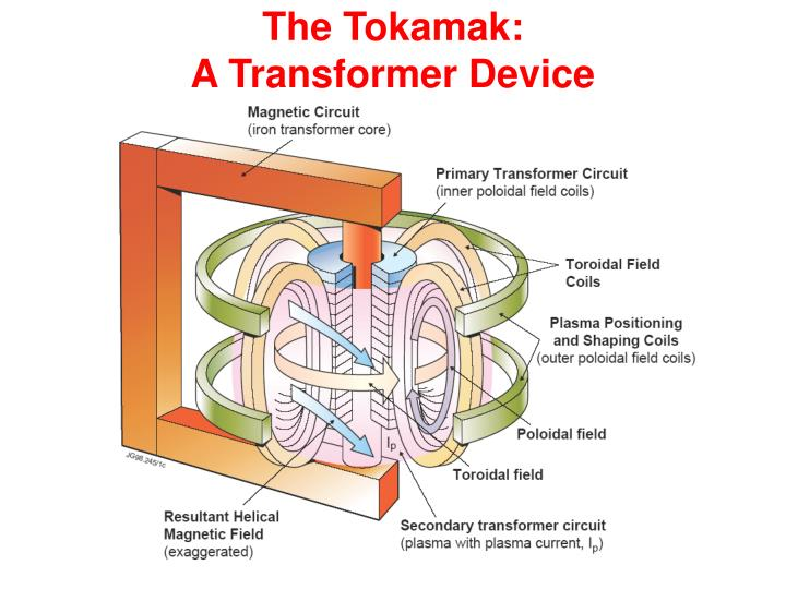 The Tokamak: