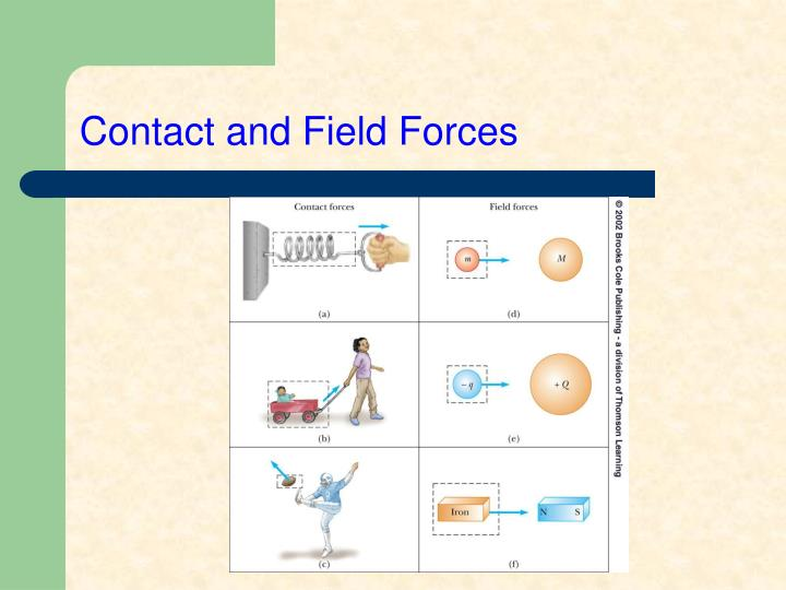 Contact and Field Forces