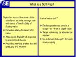 what is a soft peg