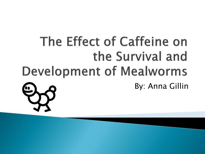 the effect of caffeine on the survival and development of mealworms n.