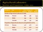 agricultural labourers number and proportions india 2011