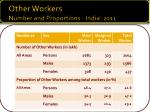other workers number and proportions india 2011