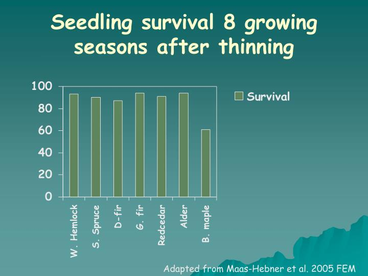 Seedling survival 8 growing seasons after thinning