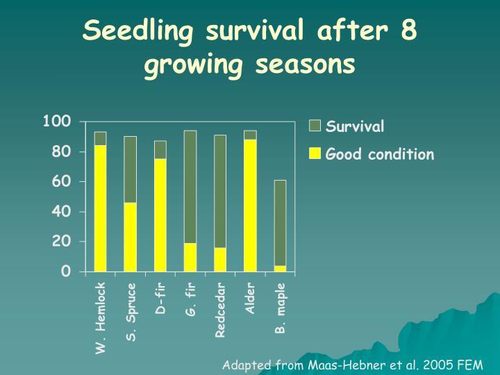 Seedling survival after 8 growing seasons