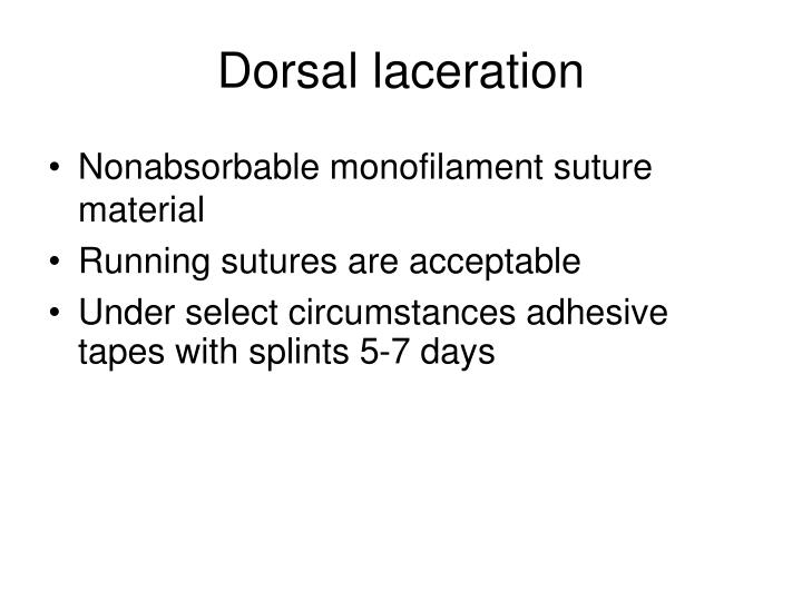 Dorsal laceration