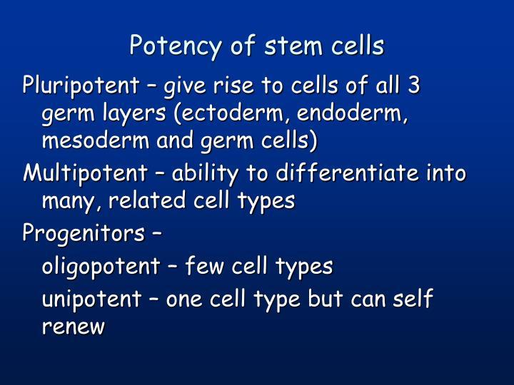 Potency of stem cells