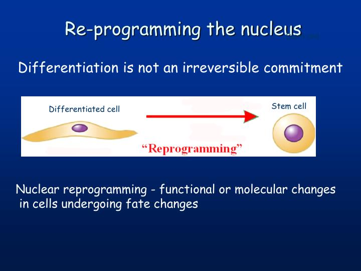 Re-programming the nucleus
