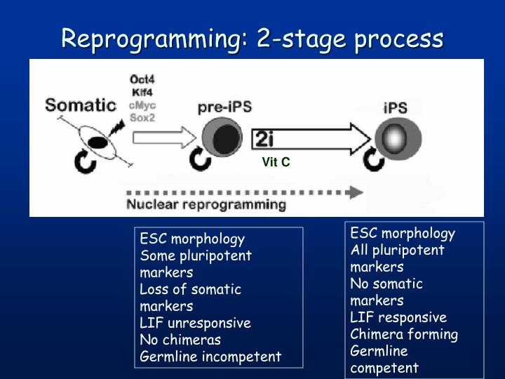 Reprogramming: 2-stage process