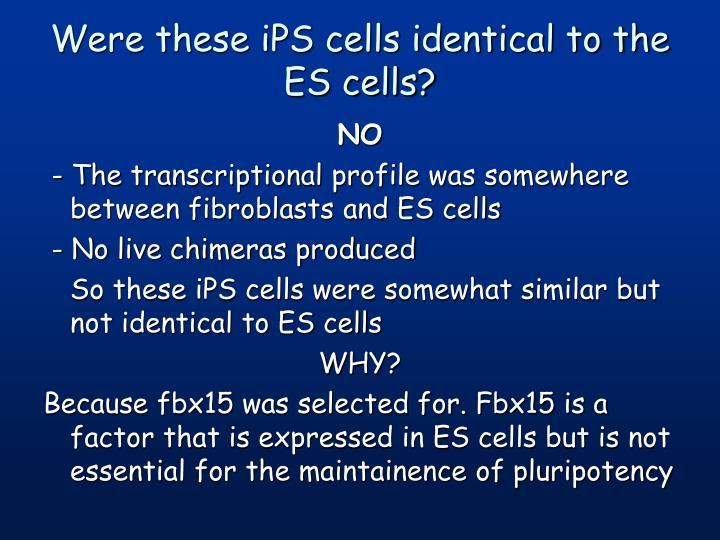 Were these iPS cells identical to the ES cells?