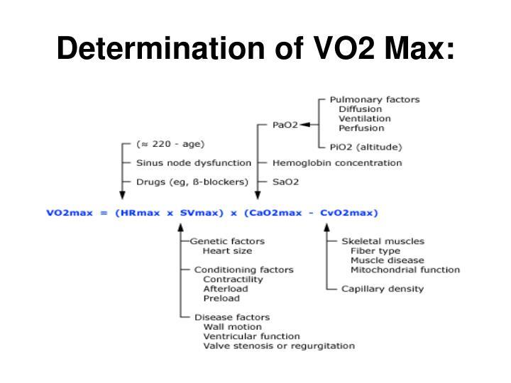 Determination of VO2 Max: