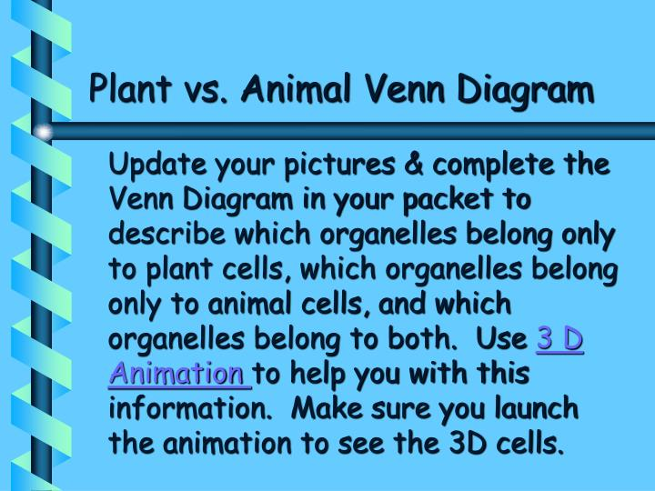 Plant vs. Animal Venn Diagram