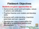 fieldwork objectives
