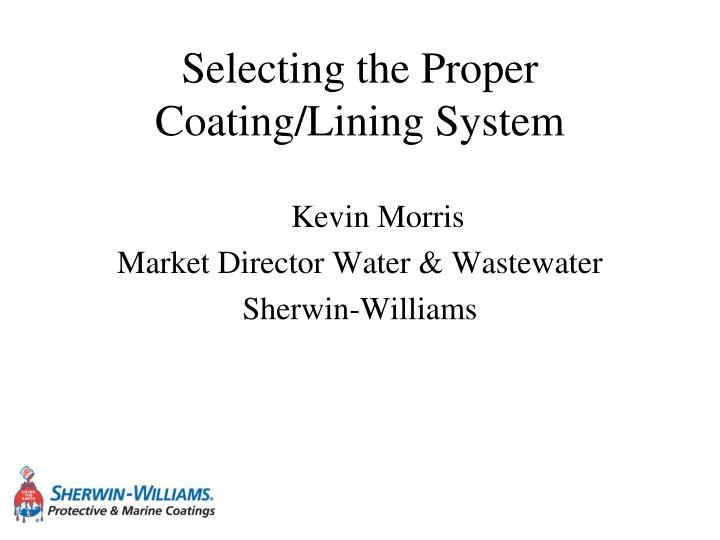 selecting the proper coating lining system n.