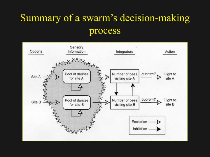 decision making process summary Making process maturity on the decision making economic efficiency and a  highly significant  figure 24: chronological summary of decision making  process.