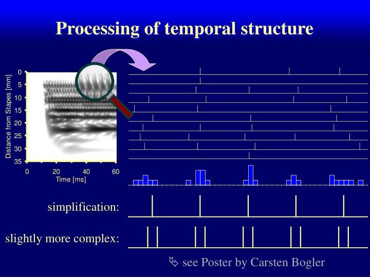 Processing of temporal structure
