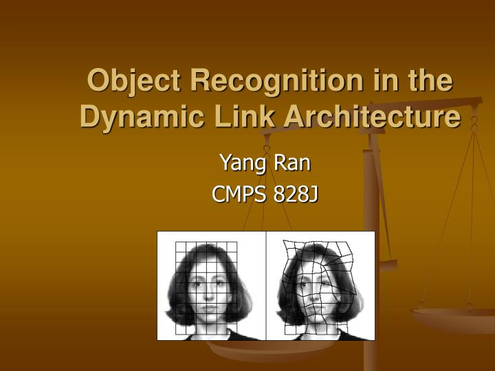 object recognition in the dynamic link architecture