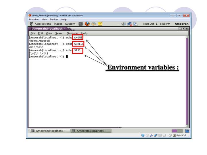 Environment variables :