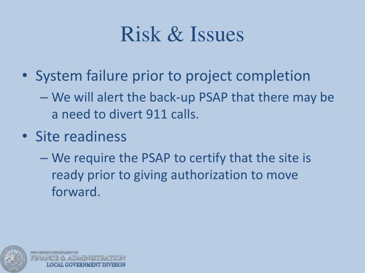 Risk & Issues