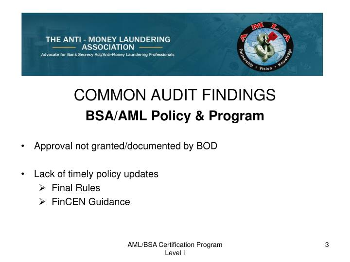 COMMON AUDIT FINDINGS