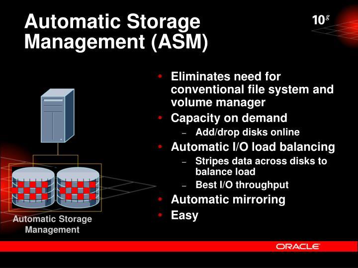 Automatic Storage Management (ASM)