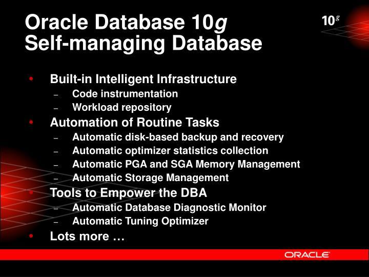 Oracle Database 10