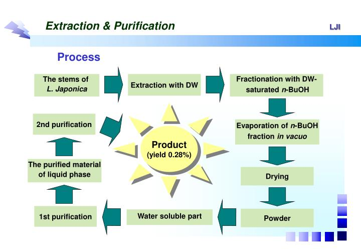 Extraction & Purification