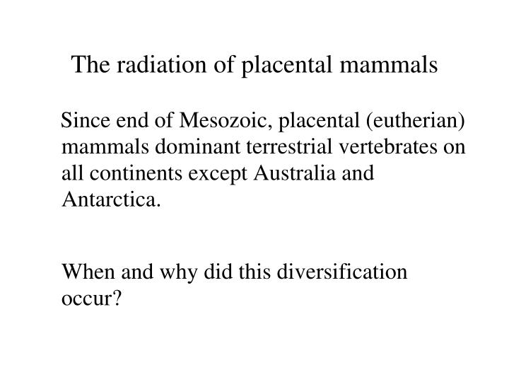 The radiation of placental mammals