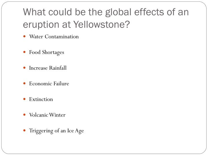 What could be the global effects of an eruption at Yellowstone?