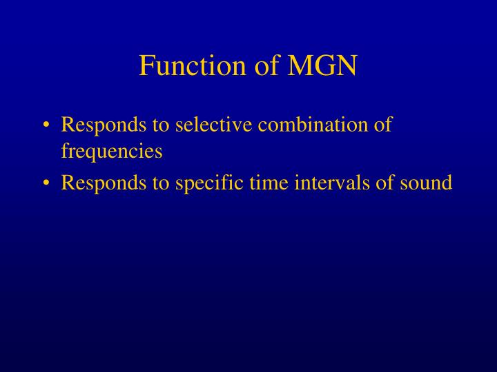 Function of MGN