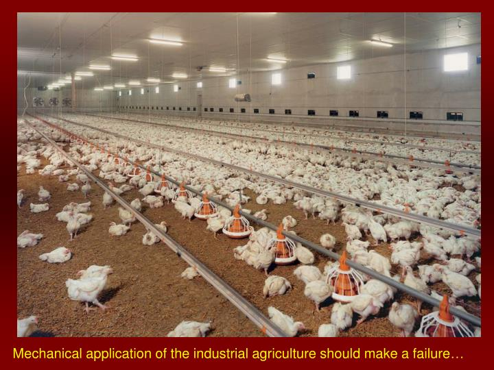 Mechanical application of the industrial agriculture should make a failure…