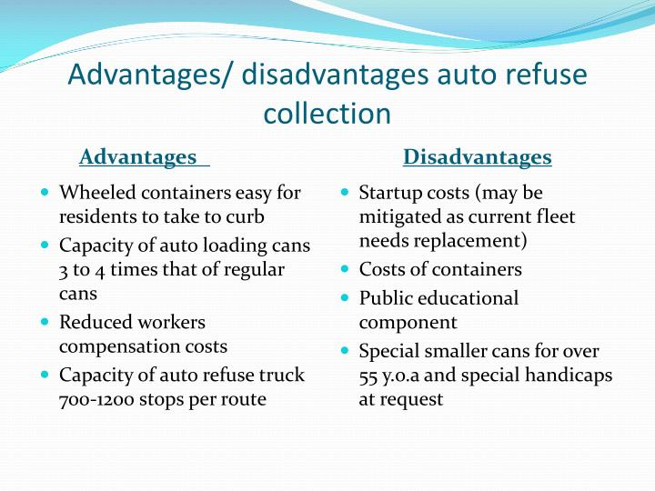advantages disadvantages of automobile industries