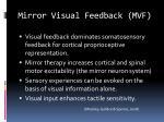 mirror visual feedback mvf
