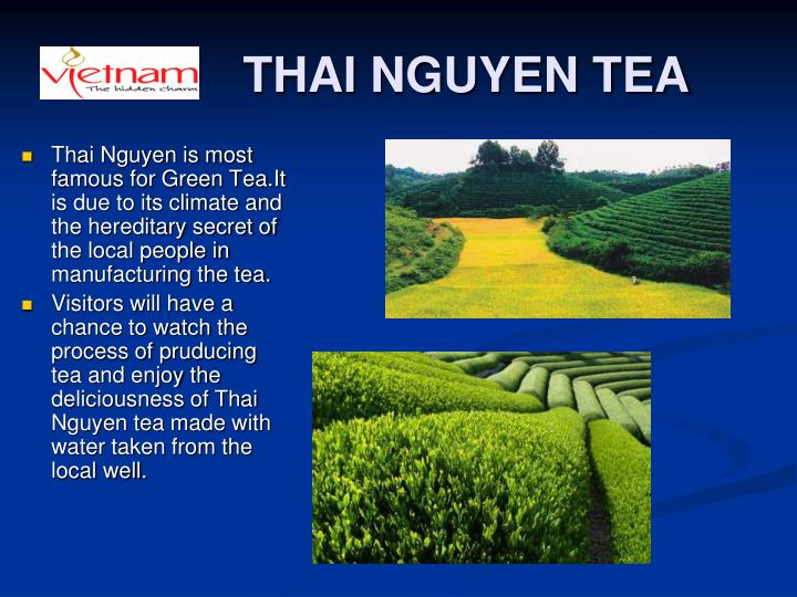 THAI NGUYEN TEA