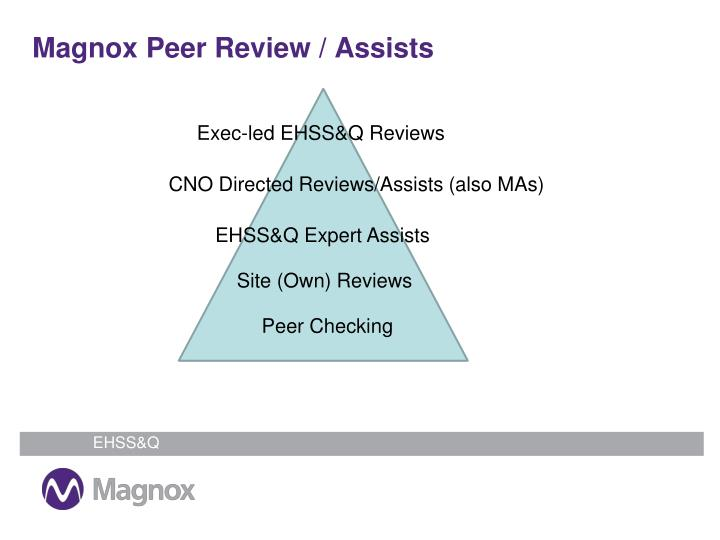 Magnox Peer Review / Assists