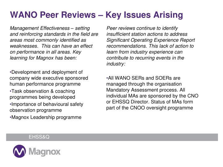 WANO Peer Reviews – Key Issues Arising