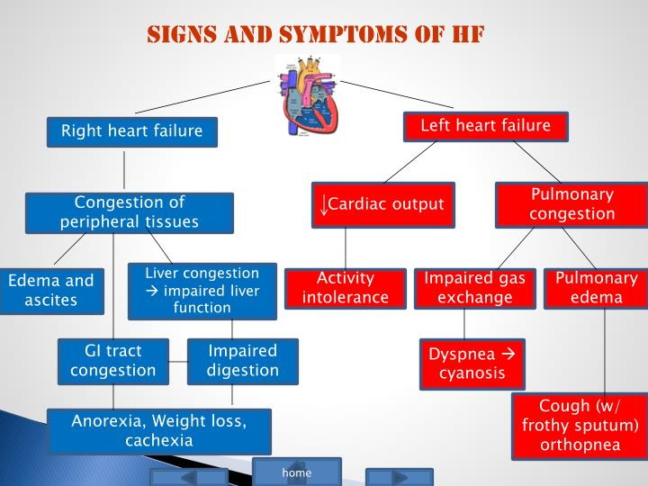 Signs and Symptoms of HF