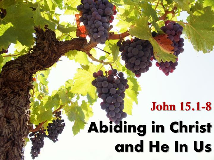 abiding in christ and he in us n.