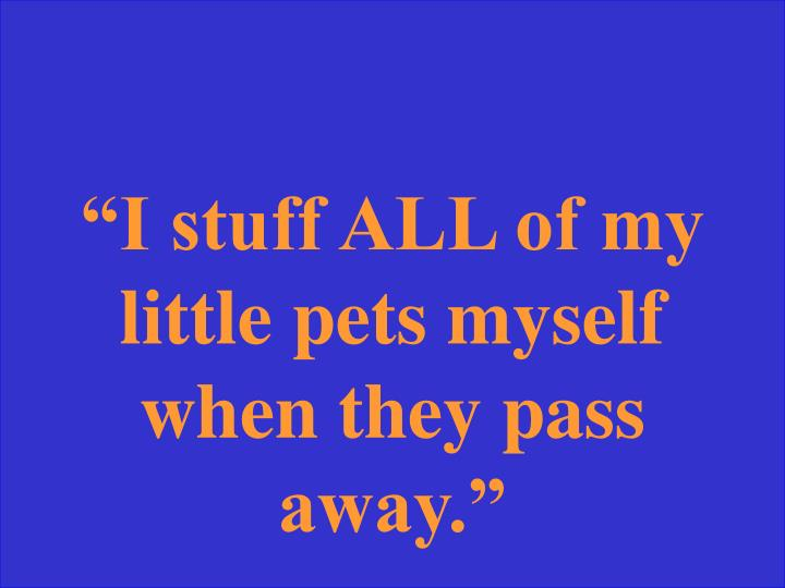 """I stuff ALL of my little pets myself when they pass away."""