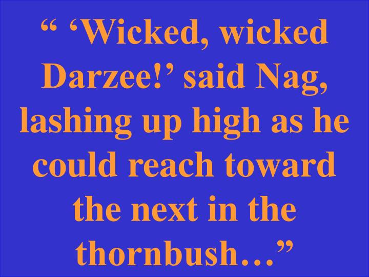 """ 'Wicked, wicked Darzee!' said Nag, lashing up high as he could reach toward the next in the thornbush…"""