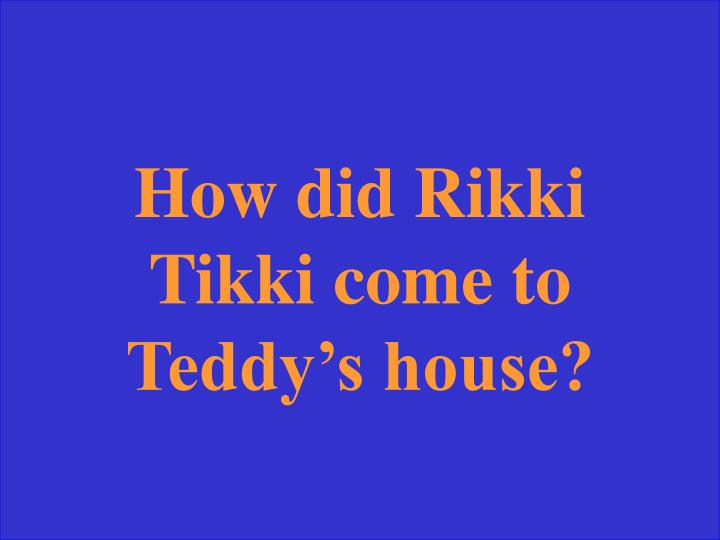 How did Rikki Tikki come to Teddy's house?