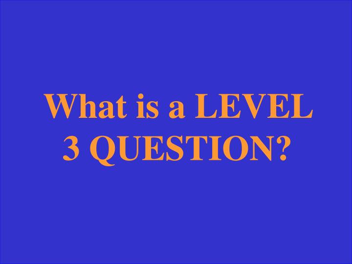 What is a LEVEL 3 QUESTION?