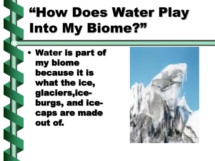 """""""How Does Water Play Into My Biome?"""""""
