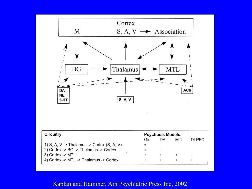 PPT - schizophrenia PowerPoint Presentation - ID:6759551