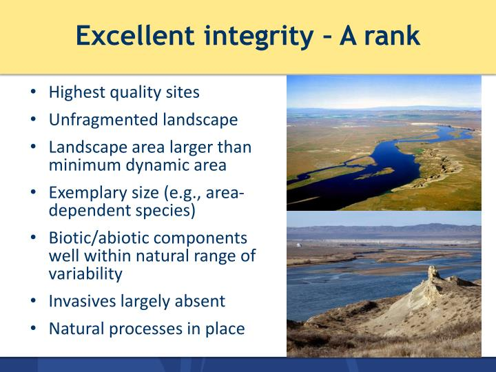Excellent integrity – A rank