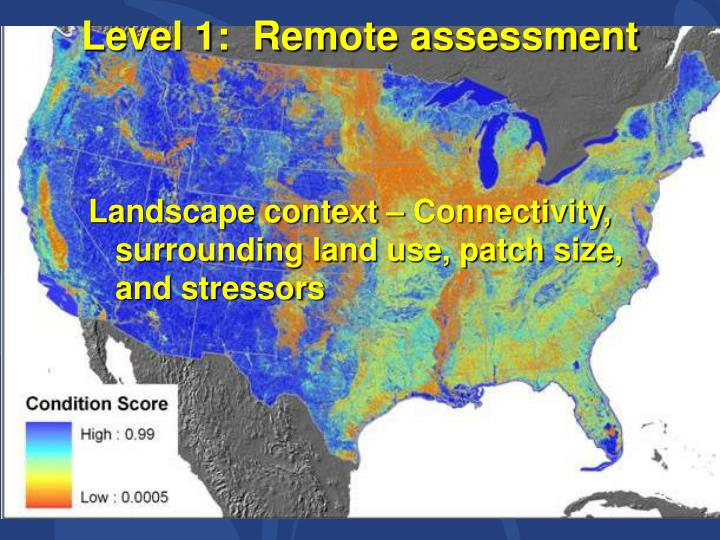 Level 1:  Remote assessment