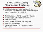6 nug cross cutting foundation strategies
