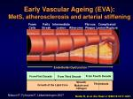 early vascular ageing eva mets atherosclerosis and arterial stiffening