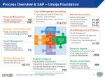 process overview sap umoja foundation