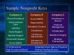 sample nonprofit keys